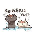 うさぎのしろとねこのくろ ぱーと7夏!(個別スタンプ:34)