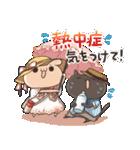 うさぎのしろとねこのくろ ぱーと7夏!(個別スタンプ:37)