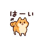 わんわん柴犬2(個別スタンプ:01)