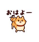 わんわん柴犬2(個別スタンプ:03)