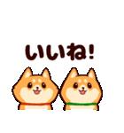 わんわん柴犬2(個別スタンプ:09)