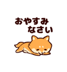 わんわん柴犬2(個別スタンプ:10)