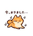 わんわん柴犬2(個別スタンプ:11)