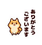 わんわん柴犬2(個別スタンプ:13)