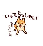 わんわん柴犬2(個別スタンプ:20)