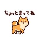 わんわん柴犬2(個別スタンプ:24)
