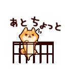 わんわん柴犬2(個別スタンプ:25)