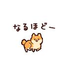 わんわん柴犬2(個別スタンプ:34)