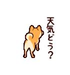 わんわん柴犬2(個別スタンプ:37)