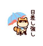 わんわん柴犬2(個別スタンプ:39)