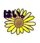【夏】カラフルさんの日常使えるスタンプ❸(個別スタンプ:09)