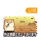 ボンレス犬 in さま~(個別スタンプ:13)