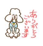 (犬)うるわしのプードル(個別スタンプ:1)
