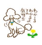 (犬)うるわしのプードル(個別スタンプ:15)