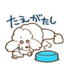 (犬)うるわしのプードル(個別スタンプ:17)