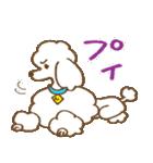 (犬)うるわしのプードル(個別スタンプ:22)