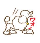 (犬)うるわしのプードル(個別スタンプ:25)