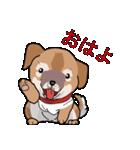 みぃころ その1(個別スタンプ:11)