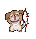 みぃころ その1(個別スタンプ:12)