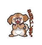 みぃころ その1(個別スタンプ:13)