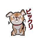 みぃころ その1(個別スタンプ:16)