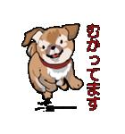 みぃころ その1(個別スタンプ:17)