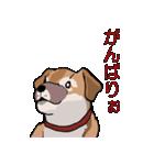 みぃころ その1(個別スタンプ:18)