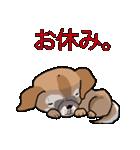 みぃころ その1(個別スタンプ:21)