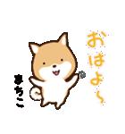 柴犬 まちこ(個別スタンプ:1)