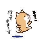 柴犬 まちこ(個別スタンプ:3)