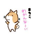 柴犬 まちこ(個別スタンプ:20)