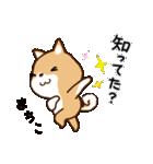 柴犬 まちこ(個別スタンプ:30)