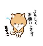 柴犬 まちこ(個別スタンプ:35)