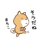 柴犬 まちこ(個別スタンプ:37)