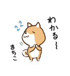 柴犬 まちこ(個別スタンプ:38)