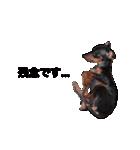 日常会話ミニピン⑨【丁寧語ver.】(個別スタンプ:17)
