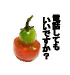 トマトスタンプ!!(個別スタンプ:30)
