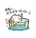 しろねこ真夏&秋パック(改訂版)(個別スタンプ:30)