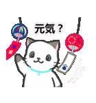 雨猫2 ☆夏の生活☆(個別スタンプ:01)