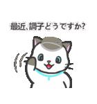 雨猫2 ☆夏の生活☆(個別スタンプ:05)
