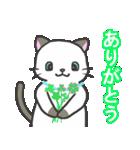 雨猫2 ☆夏の生活☆(個別スタンプ:09)