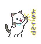 雨猫2 ☆夏の生活☆(個別スタンプ:15)
