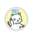 雨猫2 ☆夏の生活☆(個別スタンプ:21)