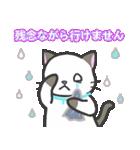 雨猫2 ☆夏の生活☆(個別スタンプ:22)