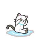 雨猫2 ☆夏の生活☆(個別スタンプ:23)