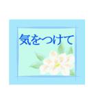 伝えたい想いにかわいい花を添えて。第11弾(個別スタンプ:16)