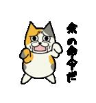 ブサイクなねこ(上から目線)(個別スタンプ:01)