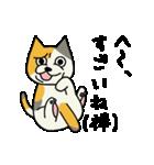 ブサイクなねこ(上から目線)(個別スタンプ:05)