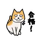 ブサイクなねこ(上から目線)(個別スタンプ:07)