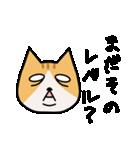 ブサイクなねこ(上から目線)(個別スタンプ:11)